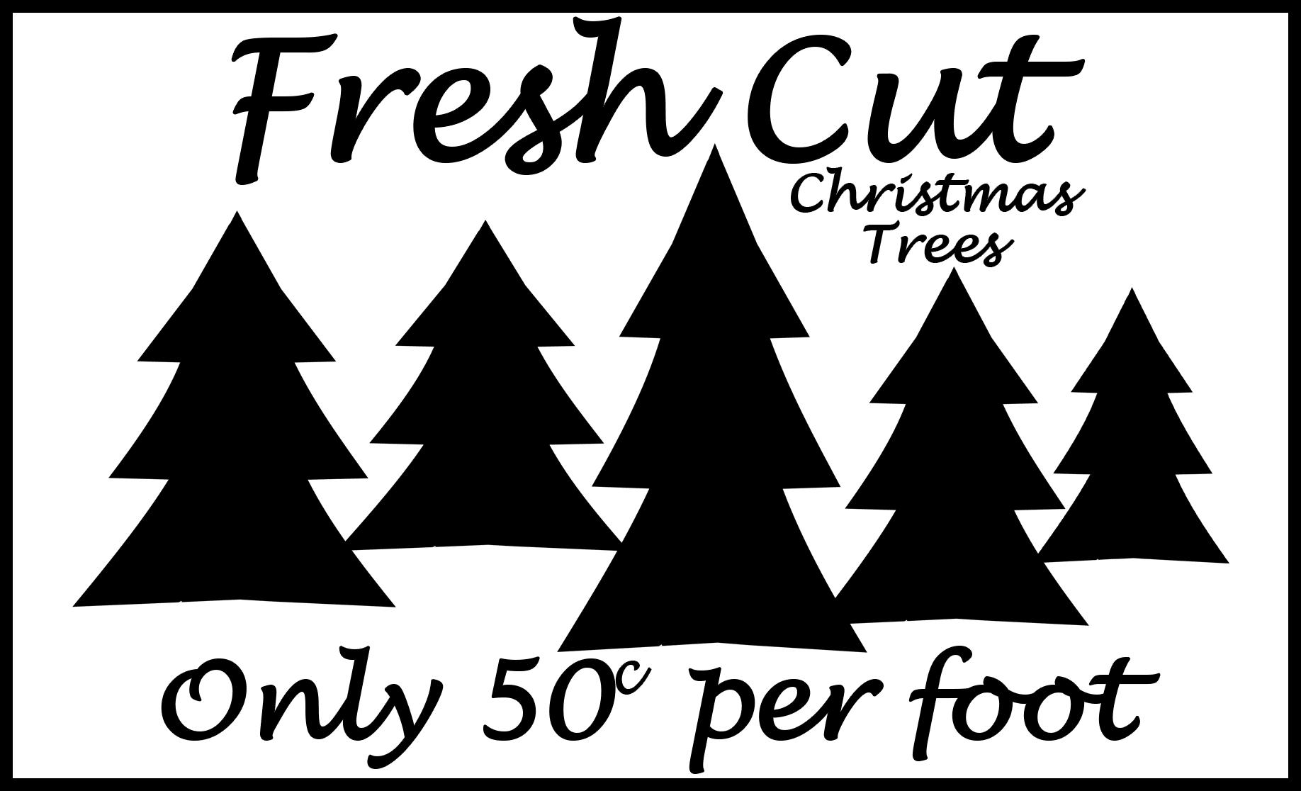 Free Fresh Cut Trees SVG File