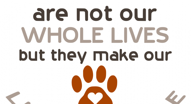 Free Whole Lives SVG Cutting File